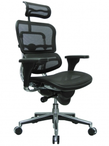 ErgoHuman Mesh Back Task Chair