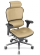Executive Ergonomic Chairs